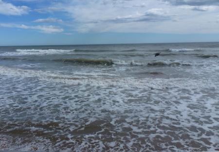 """""""Ja sóc l'ona..."""". Fot. Frèia Berg, març 2013"""